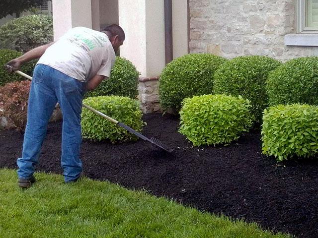 Landscape Maintenance Columbus Ohio
