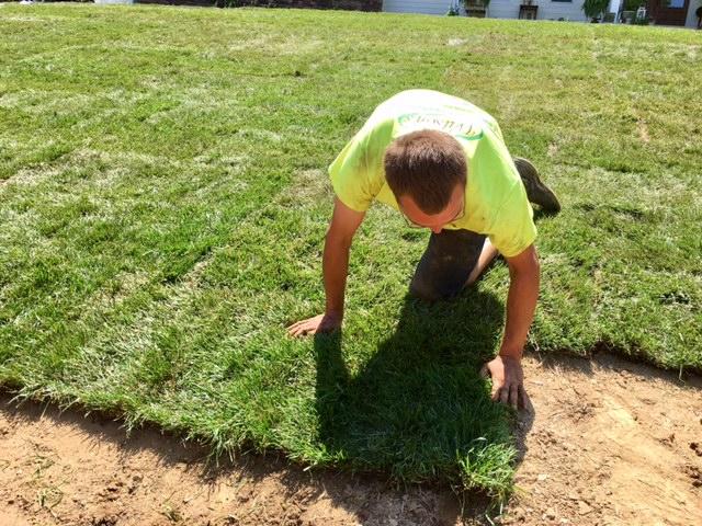 Yard Grading & Maintenance | Wilson's Landscaping Services